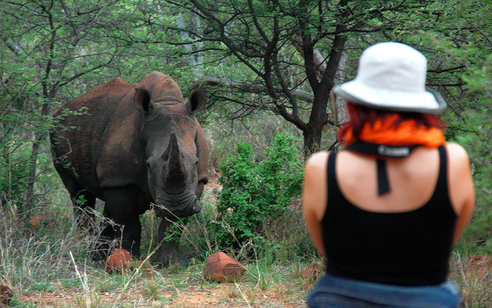Rhino experience in the Waterberg Wilderness private nature reserve